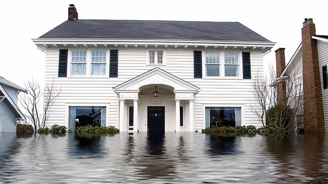 chem-dry-water-damage-restoration-feat